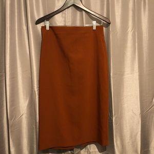Zara Midi - Long Pencil Skirt